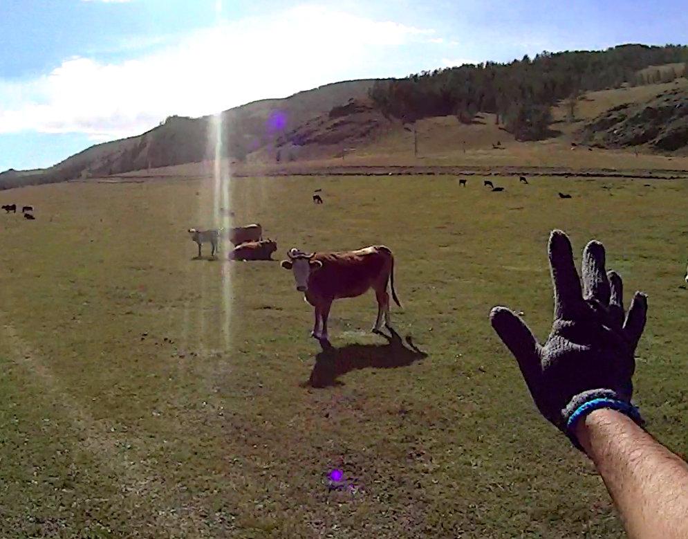 テレルジで馬に乗った状態からアクションカムで撮影してみた動画をあっぷ(酔いやすい方は閲覧注意)