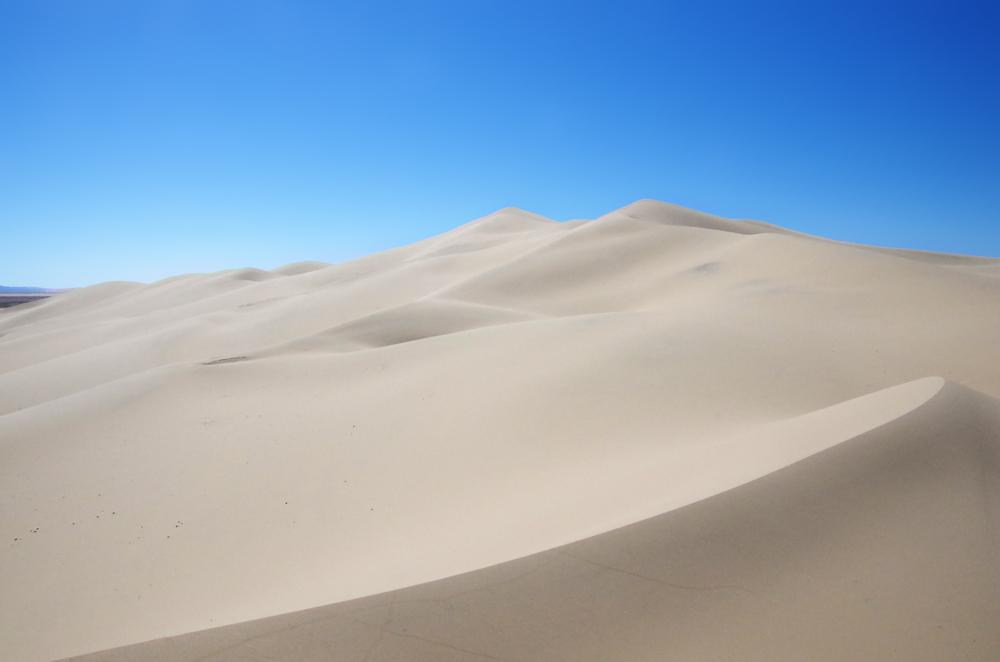ゴビ砂漠へ行ってきました。