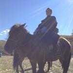 学校をさぼって馬に乗りに行ったら先生と出くわした(追伸:デール買いました)