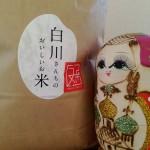 鳥取のお米を食べ比べしてみた結果
