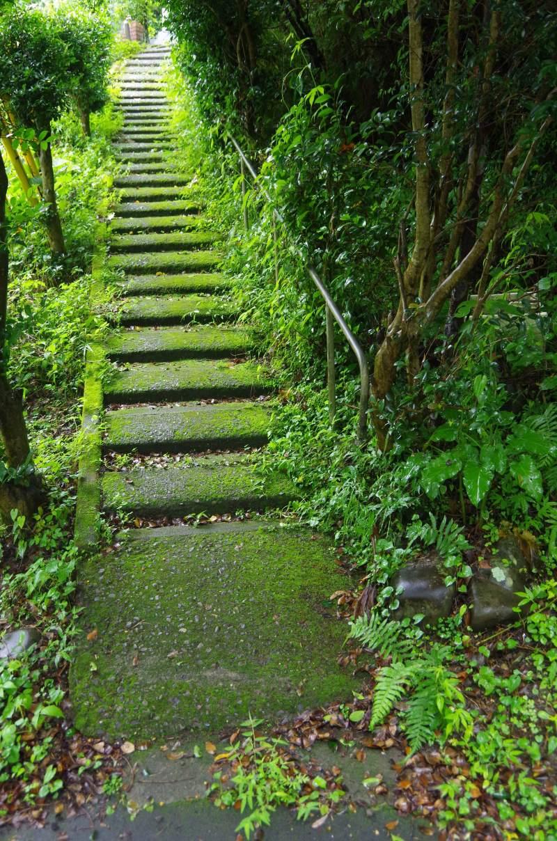 鍛冶を学ぶ旅 3日目 須崎〜四万十川